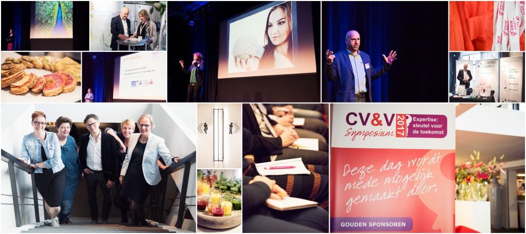 CV&V collage